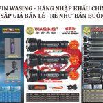 den-pin-wasing-1