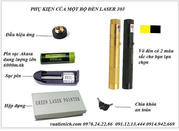 den-laser-303