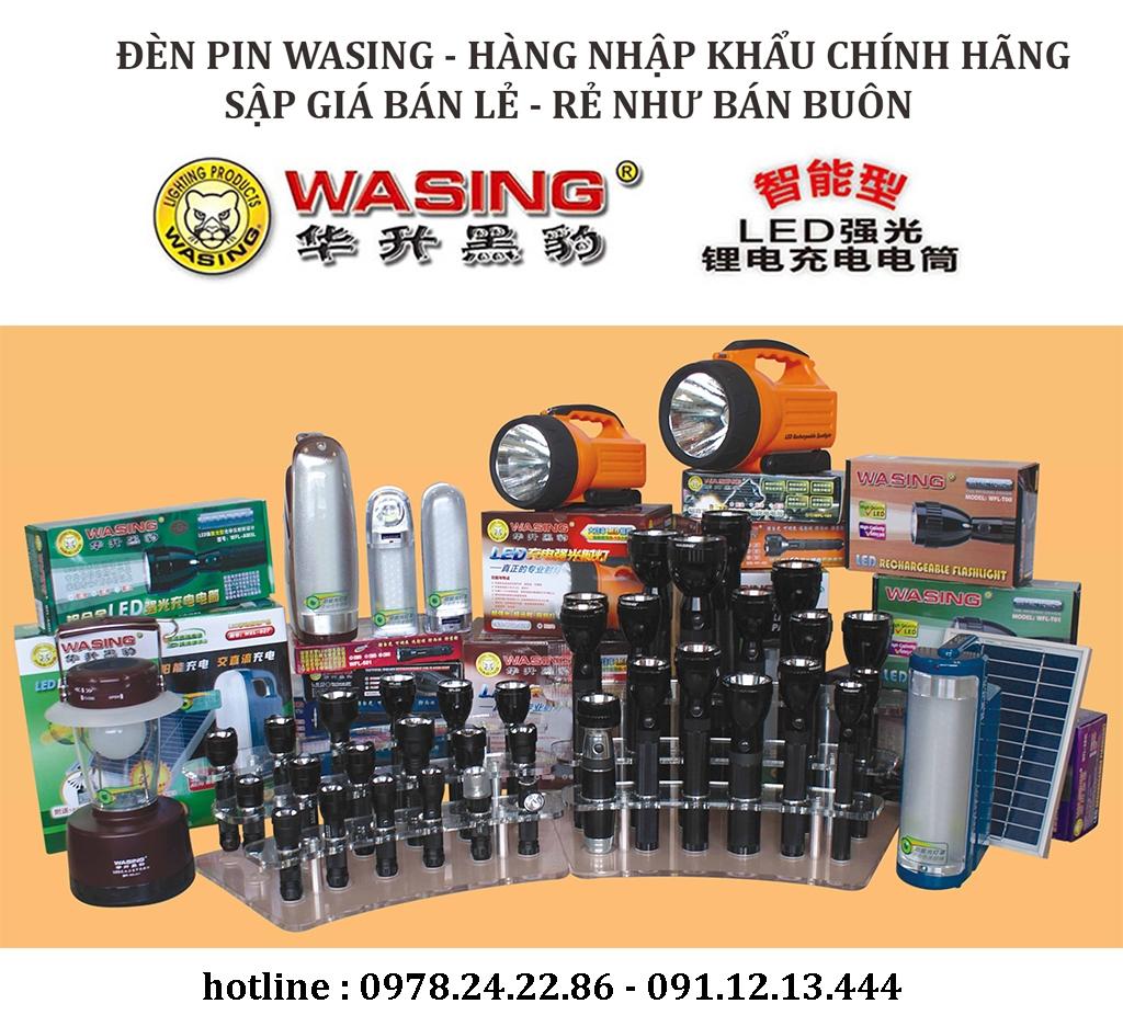 den-pin-wasing-12